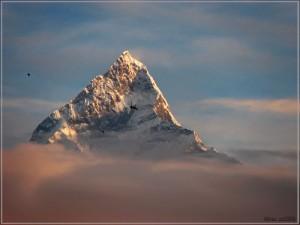 Fish Tail Mountain