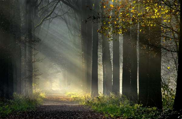 Spiritual-Journey1