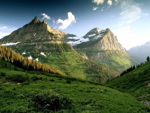 amazing-green-mountains-with-trees-lanscape-wallpaper1-300x225