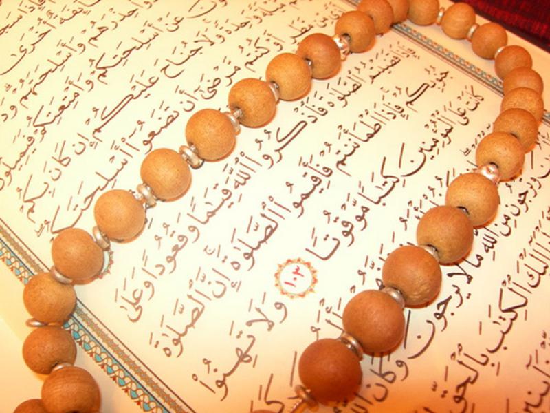 quran_Photo_image4arab-81